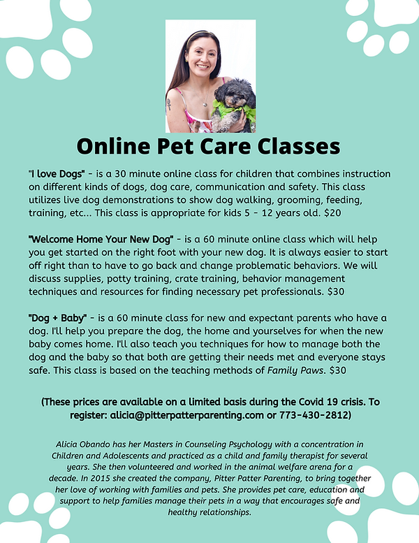 Online Pet Care Classes during Covid 19.
