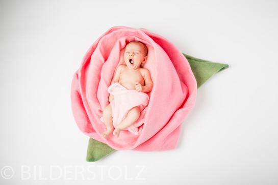 Baby-1.jpg