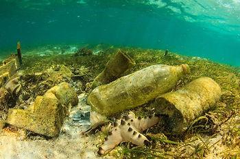 Ocean_pollution_grande.jpg