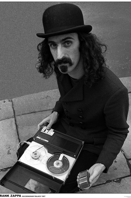 Frank Zappa [Poster]