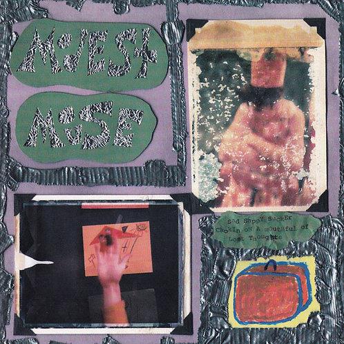 Modest Mouse - Sad Sappy Sucker [LP]