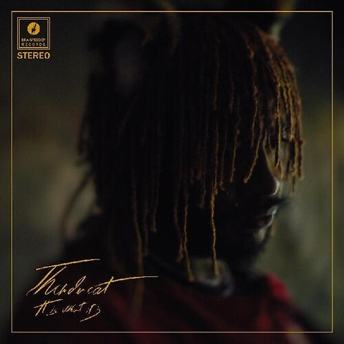 Thundercat - It Is What It Is [LP]