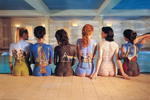 Pink Floyd - Album Art (Back Covers) [Poster]