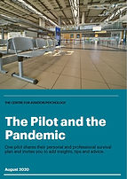 The Pilot and the Pandemic.JPG