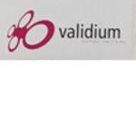 Validium.png