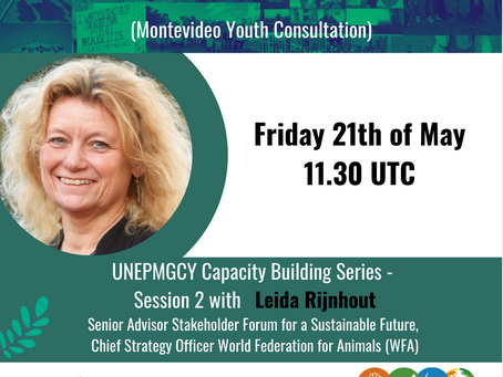 International Environmental Law - The role of youth