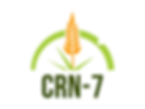 CRN 7.png