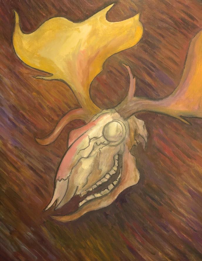 leukos kerunnos (fallow deer skull)