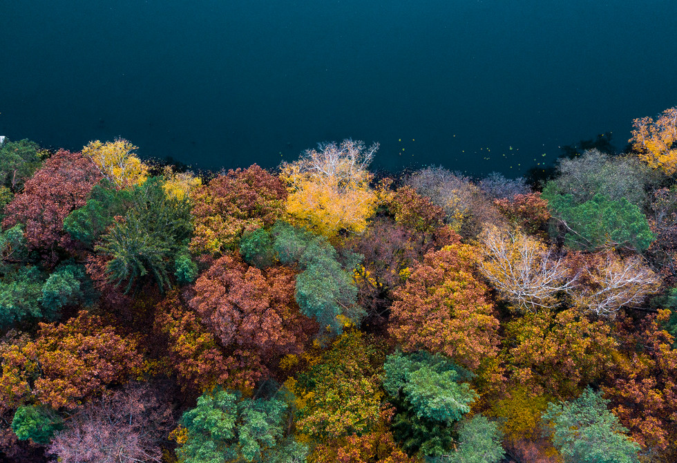 autumn mielno3.jpg