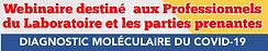 1600364833413_Celebrate Lab COVID19 Webi