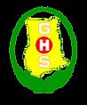 GhanaHealthLogo.png