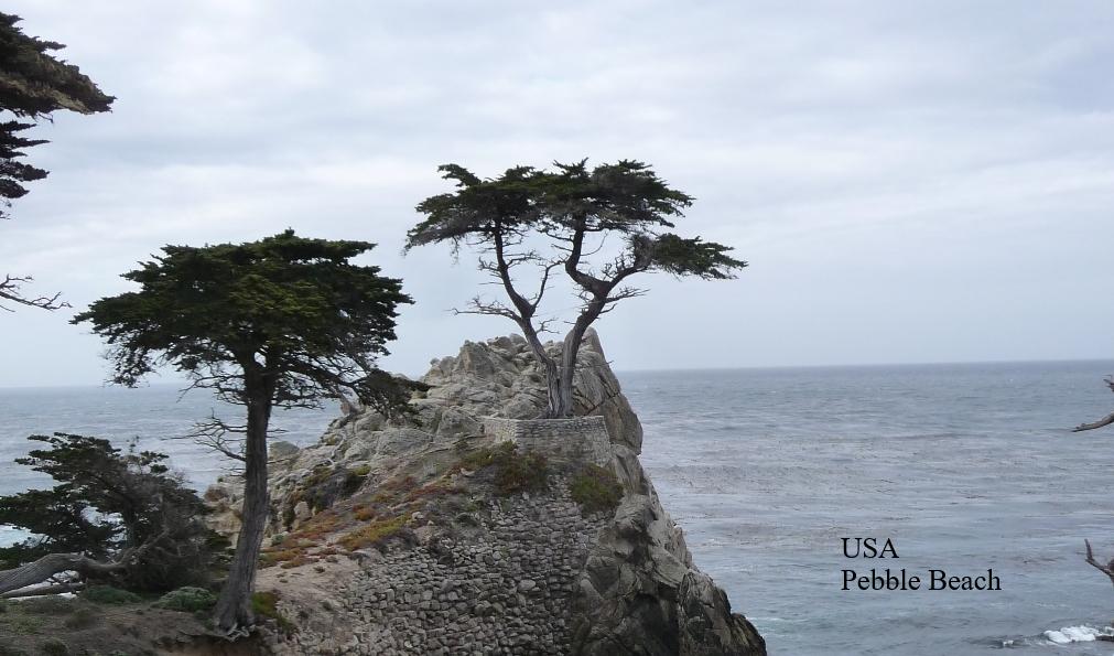 Pebble Beach - Kopie.png