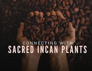 Maca + Cacao (2).jpg