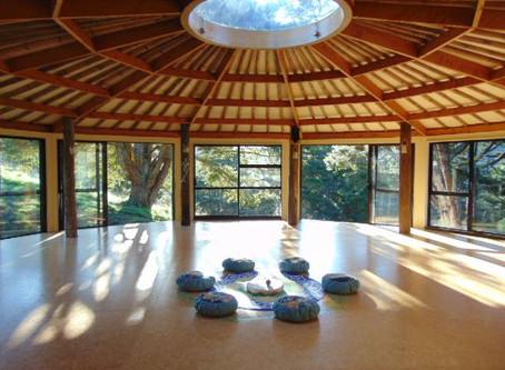 Kanuka Day Retreat - Spring Soul
