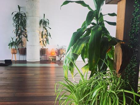 Kanuka Yoga Space - Auckland, New Zealand