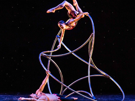 10 Things I Learned About Momix From a Simple Google Search
