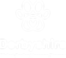 DCMCT_Logo_FINAL-1.png