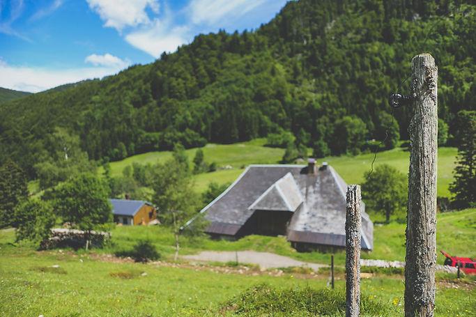 Schwarzwaldhof_Bender_Umgebung_73.jpg