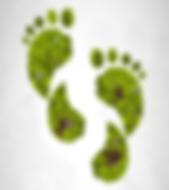 Logo BioExerceo Course Barefoot Minimaliste empreinte de pas nature