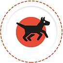 Nerezové agility vybavenie pre psov