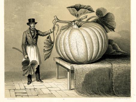 Oh my gourd!...