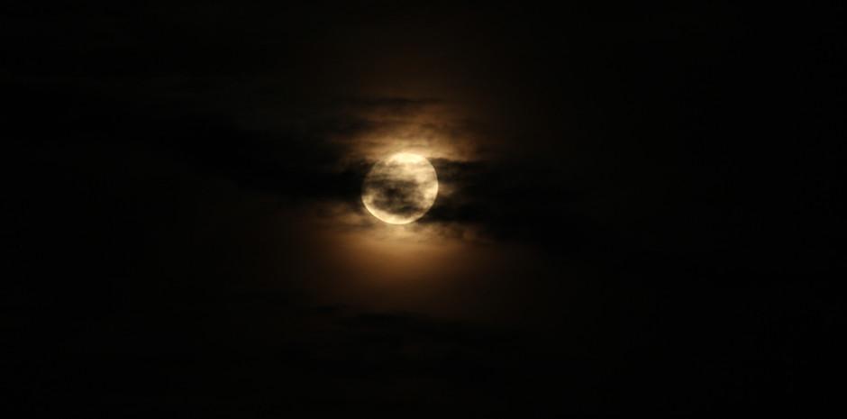 Night Life Drive Moon
