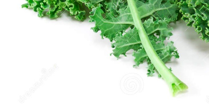 Kale:  Vegetable of Romance.