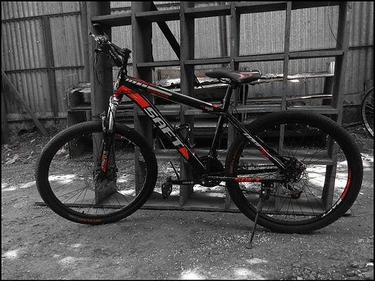 BAOL (GTR 710)