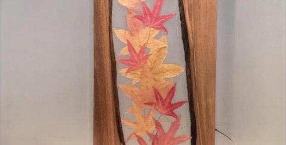 The Birch Bay Board