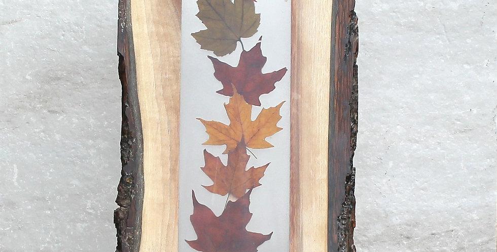 Maple Leaf Art Board