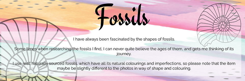Fossils 2.png