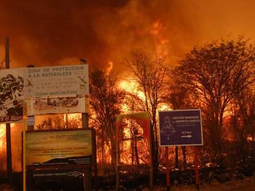 Aprueban modificación de la Ley de Manejo del Fuego