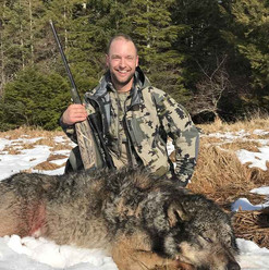 Alaskan Wolf Hunt