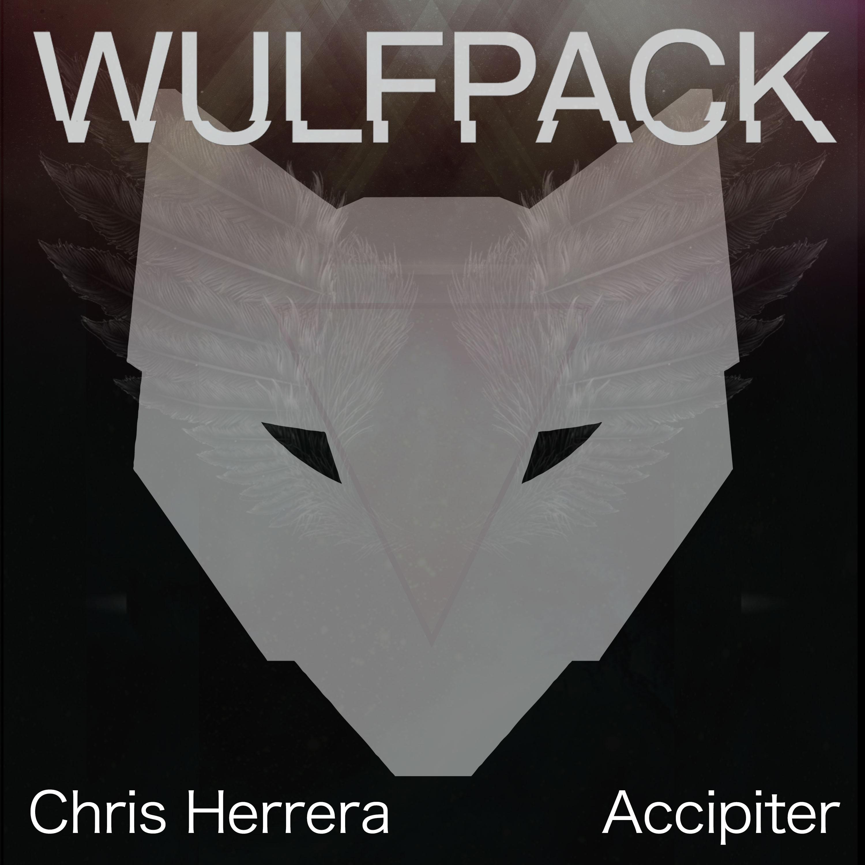 Chris-Herrera---Accipiter2