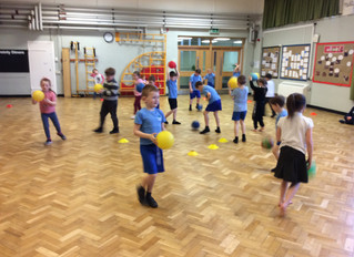 PE Stars in Chestnut