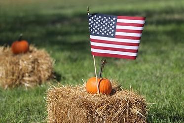 flag&hay.jpg