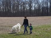 walking Fu in field.jpeg