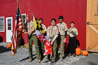 BoyScout Color at rest.jpg