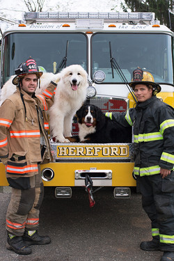 Our Firefighters!
