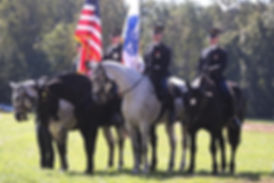 old guard in field_edited.jpg