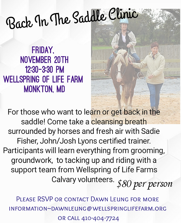 Sadie Clinic November 2020.png