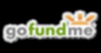gofundme-logo-copy.png