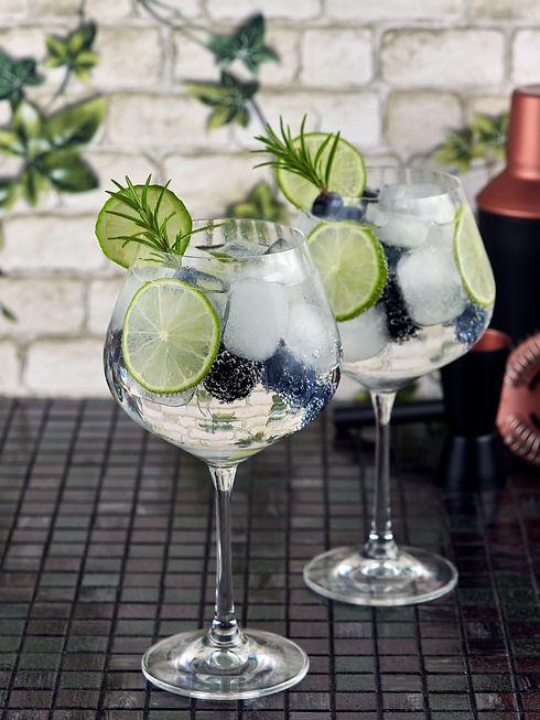 prestation gin tonic.jpg