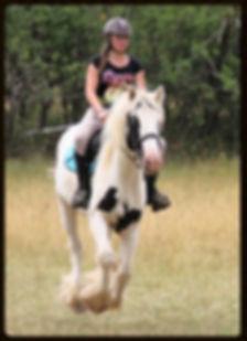 équitation sport loisir enfants activités équitation aude 11350 balades cso dressage pension débourrage poneys jument cheval élevage poulain