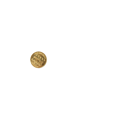 ParcadeCoin.png