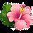 kealni flower 6.png