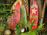 Maui-Wowi-Hawaiian-Coffees-Smoothies-Loc