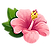 kealani health flower.png