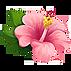 kealani health flower
