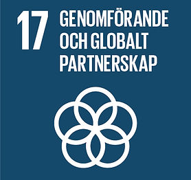Sustainable-Development-Goals_icons-17-1